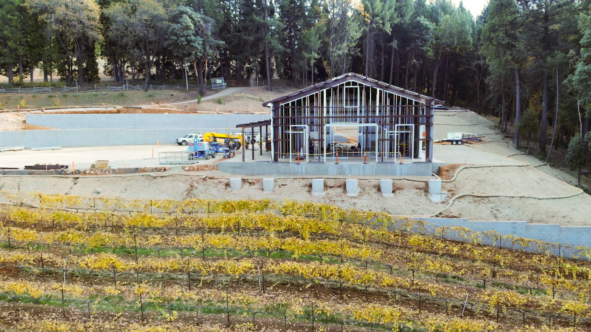 Delfino Farms Winery & Tasting Room