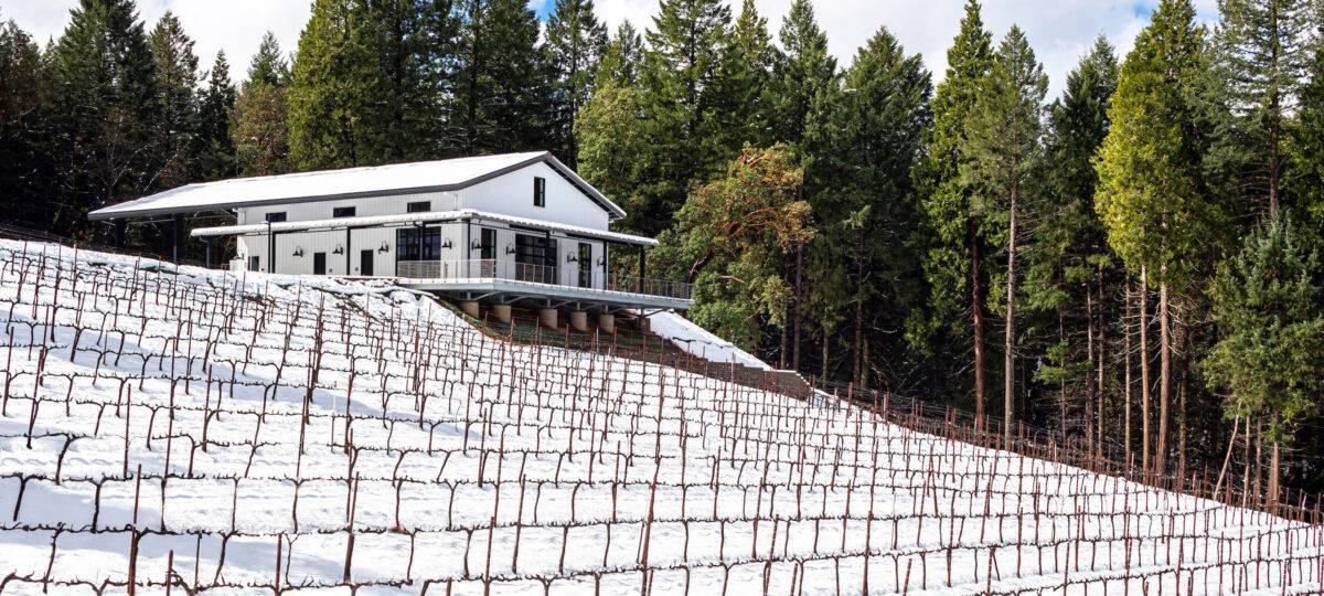 Delfino Farms in the snow
